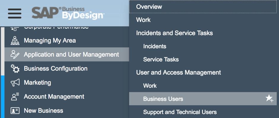 Bösch ERP - Tips on user administration in SAP Business