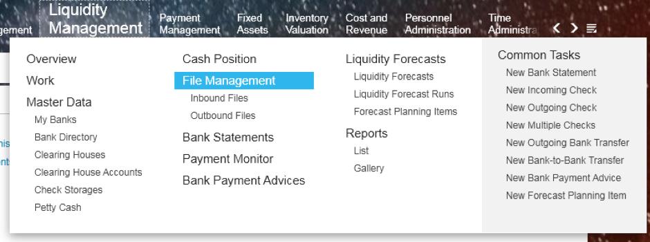 Bösch ERP - File Management in Liquidity Management in SAP